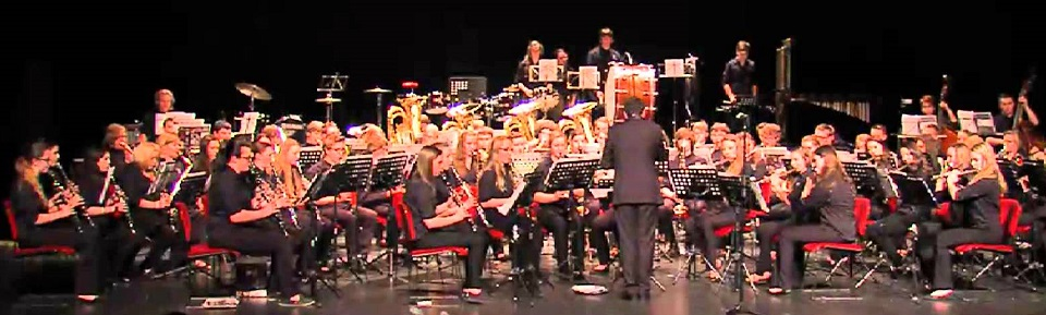 The DHS Band, Symphonic Winds, perform in Spain in the Spring of 2015 under the direction of conductor Javier Pérez Garrido.